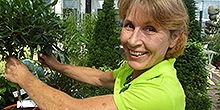 Claudia Porsche-Lia Verkauf Pflanzenmarkt