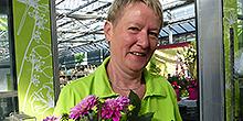Traudel Griesinger Verkauf Pflanzenmarkt