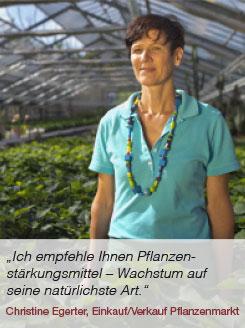 Pflanzenmarkt Abteilung Gärtnerei Manz