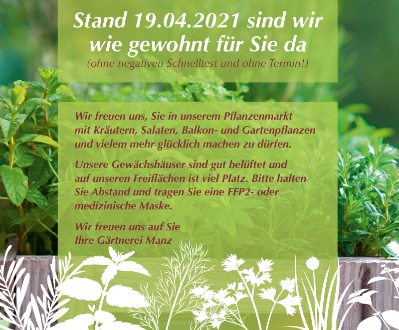 Gärtnerei Manz Neckartenzlingen