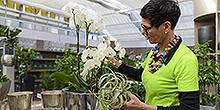 Christine Egerter Einkauf/Verkauf Pflanzenmarkt