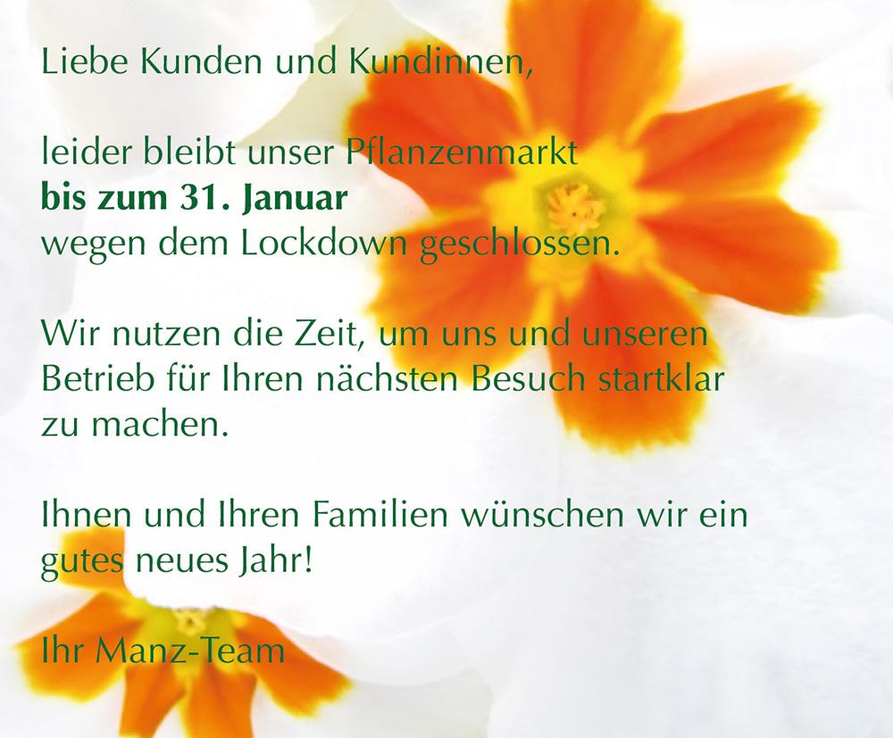 Lockdown Gärtnerei Manz Neckartenzlingen Blumen und Pflanzen